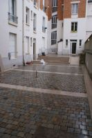 rue_buffon_paris_75_01